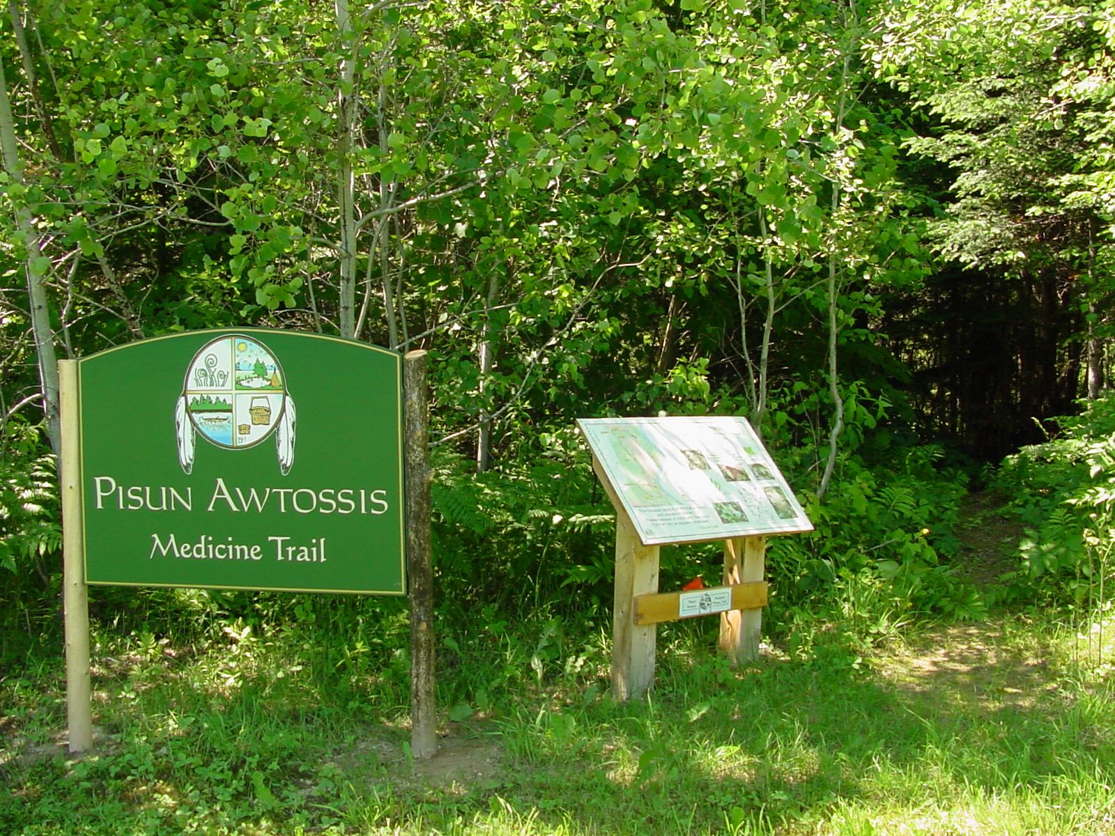 nature-trail-2
